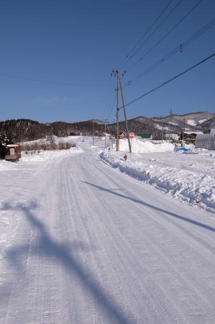 20101230_3.jpg